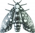 Fotoelektrický hlásič kouře Butterfly